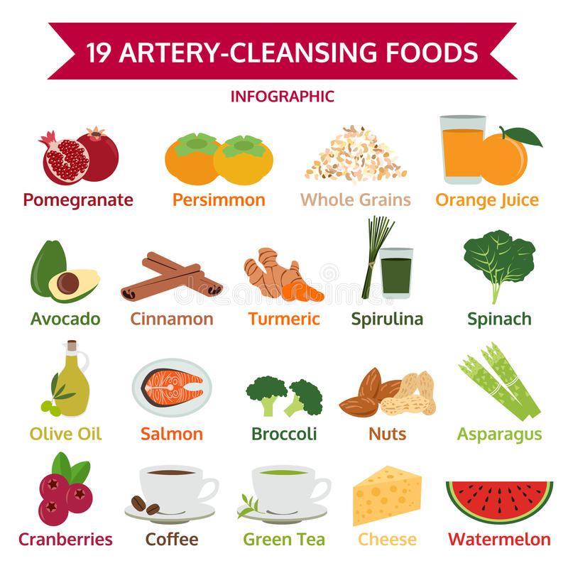 19 artery-cleansing foods, info graphic food, icon vector. Illustration royalty free illustration