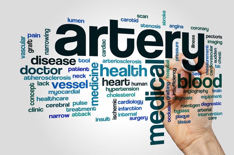 Artery word cloud concept on grey background.  royalty free stock image