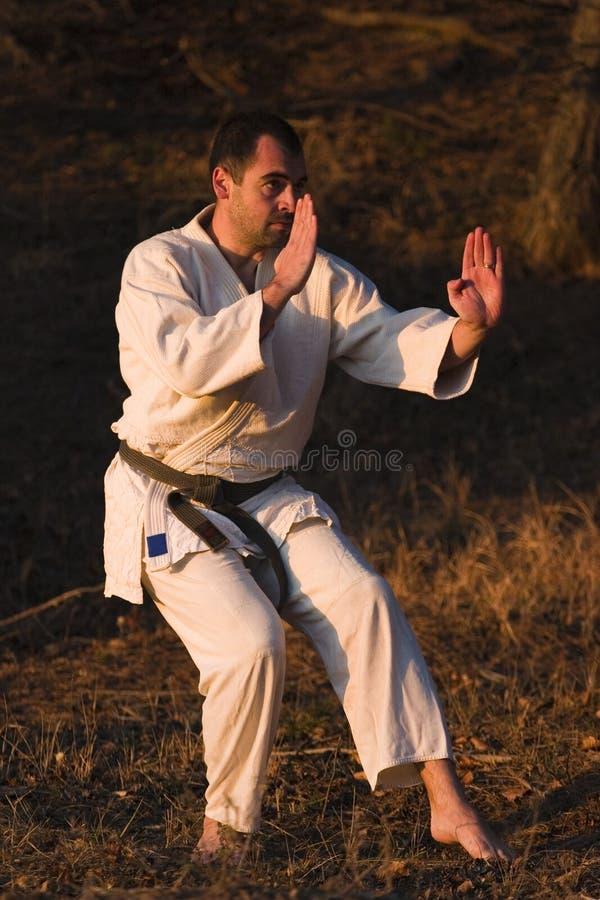 Artes marciais fotografia de stock