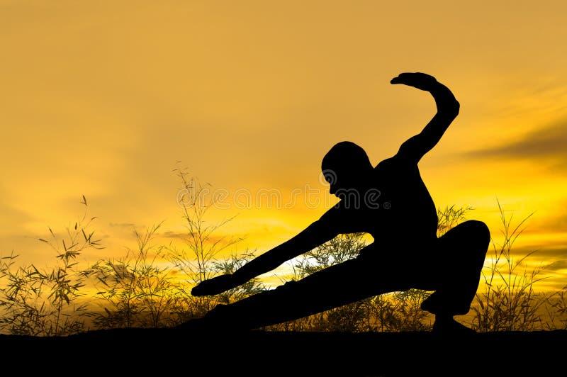 Artes marciales fotografía de archivo libre de regalías
