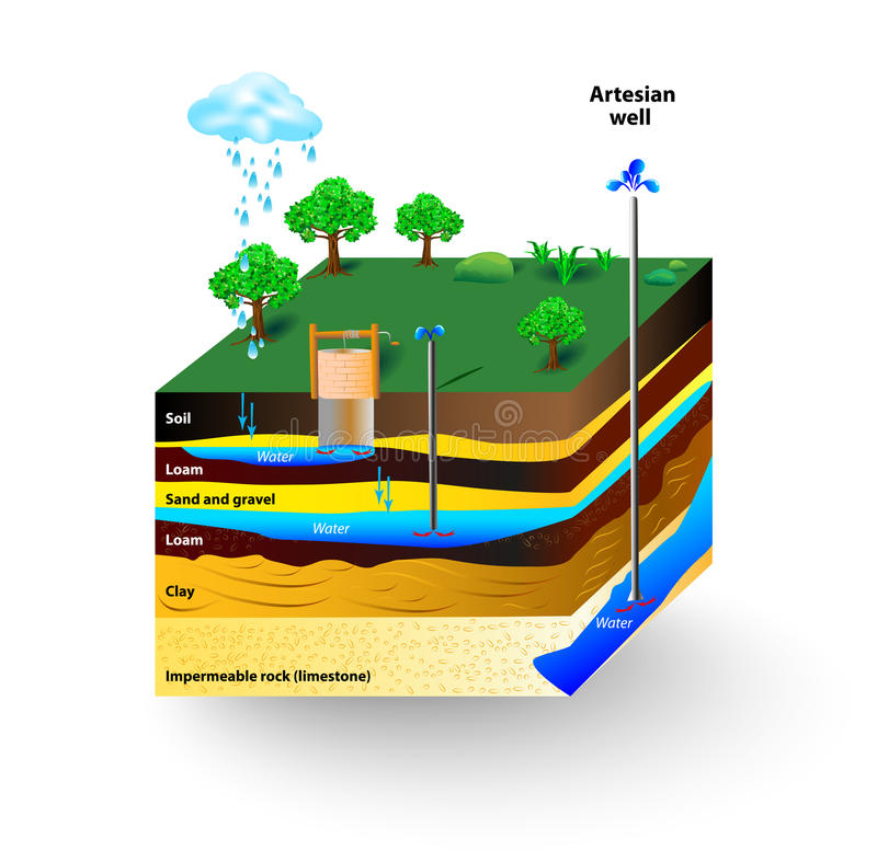 Artesian water. And Groundwater. Schematic of an artesian well. Typical aquifer cross-section. Vector diagram