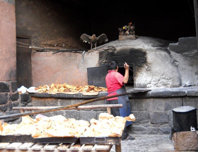Artesisch Baker in de Andes stock afbeeldingen
