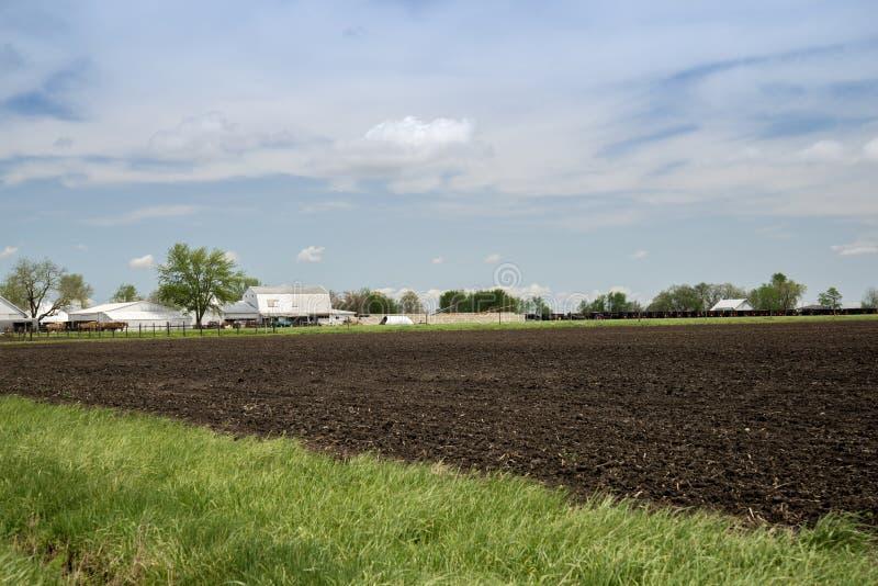 Arthur Illnois Amish lantgårdland arkivbilder