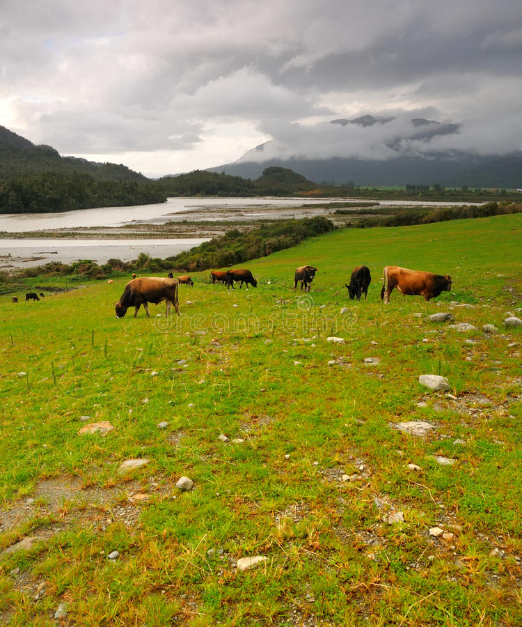Free Arthur S Pass After The Storm Royalty Free Stock Photo - 15615805