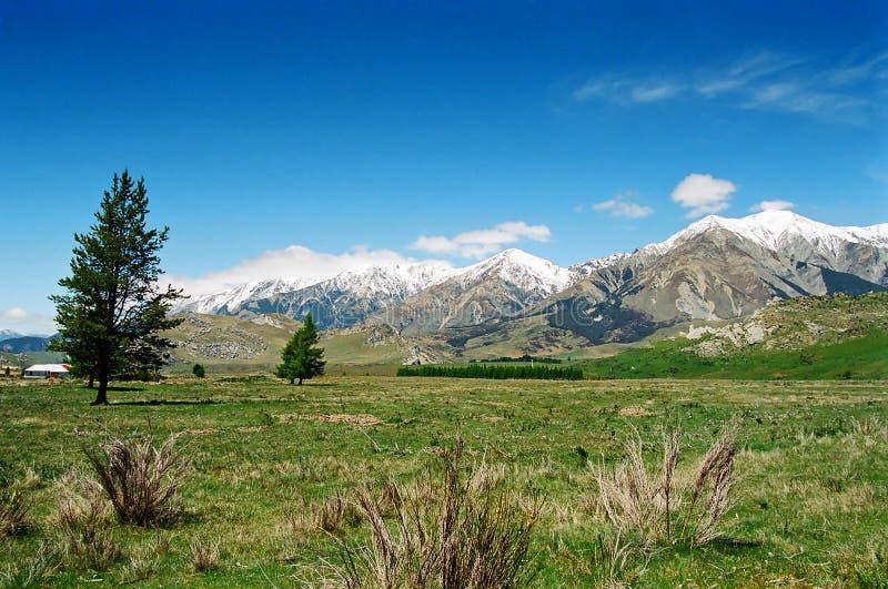 Arthur's Pass New Zealand royalty free stock images