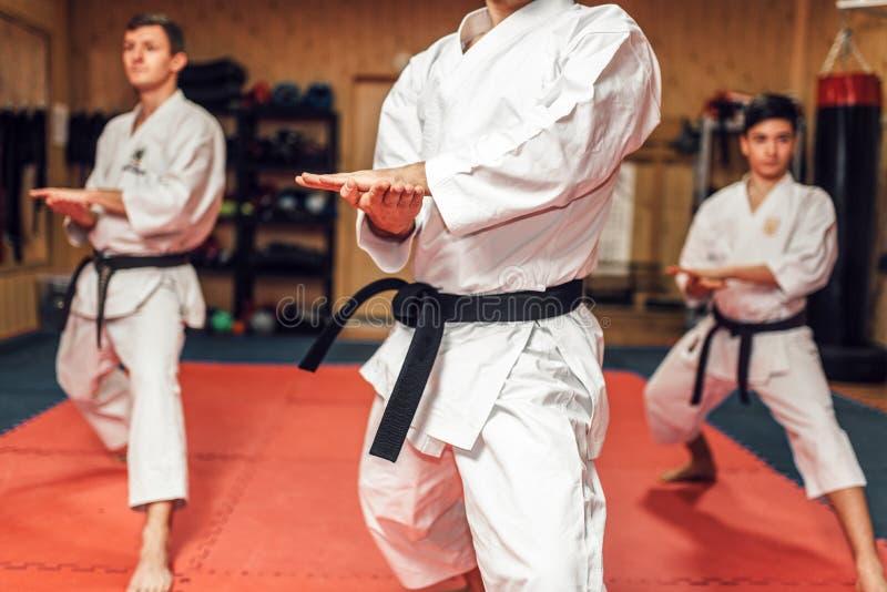 Arti marziali, addestramento di lotta nell'azione immagini stock