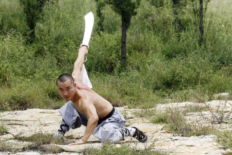 Arti marziali?.broadsword. immagini stock libere da diritti