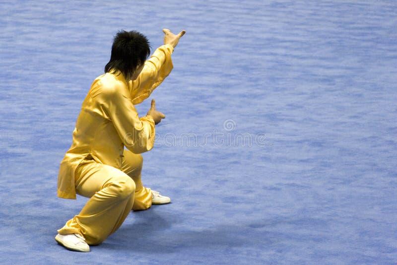 Arti marziali cinesi (Wushu) fotografia stock libera da diritti