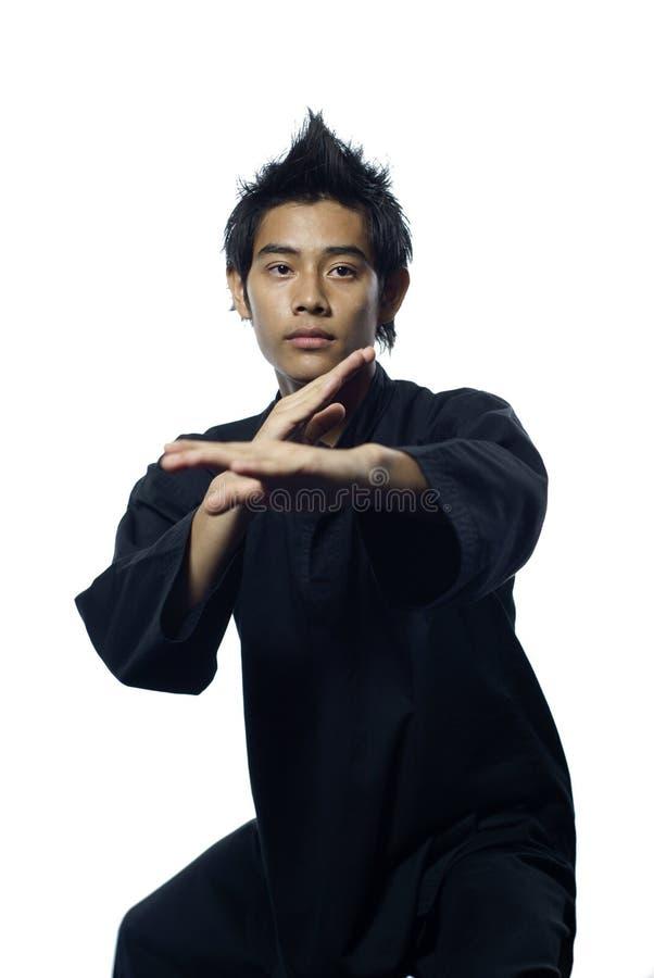 Arti marziali del silat del Malay fotografia stock