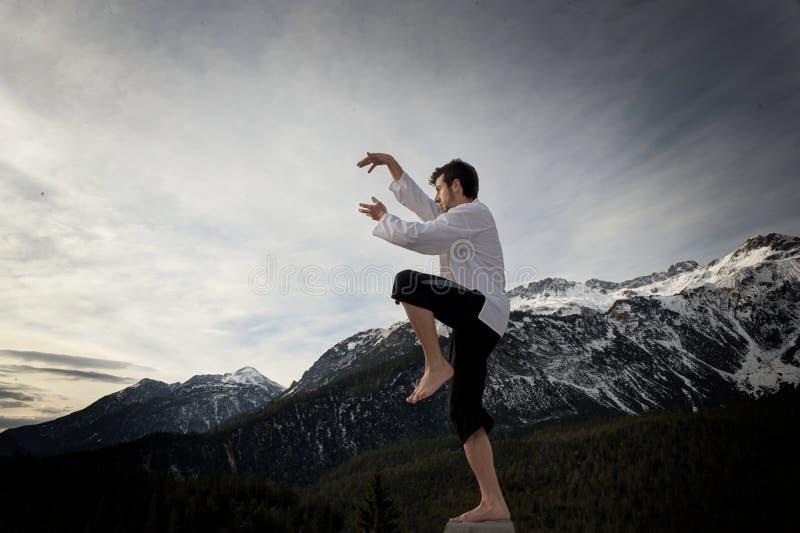 Arti marziali di pratica dell'uomo fotografia stock