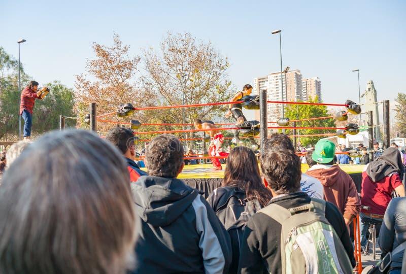 Arti marziali di sorveglianza della folla all'aperto fotografia stock libera da diritti