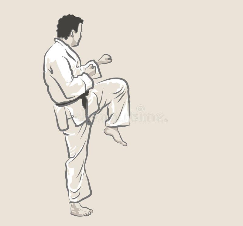 Arti marziali - scossa illustrazione vettoriale