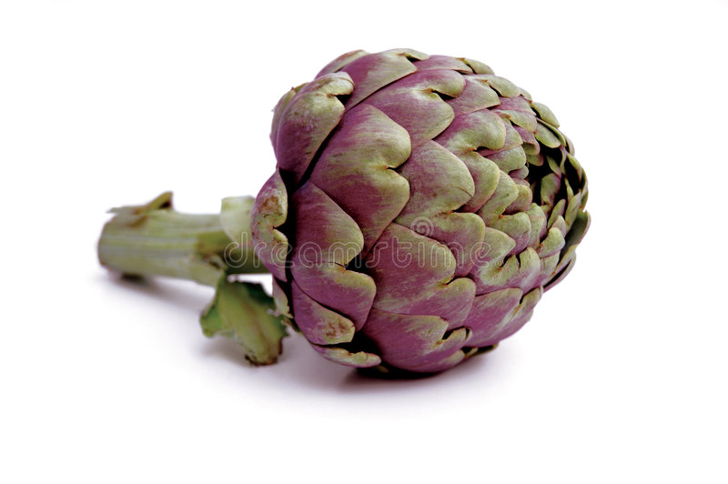 Artichoke C3 royalty free stock images