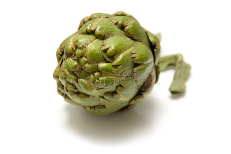 Download Artichoke flower head stock image. Image of background - 1420911