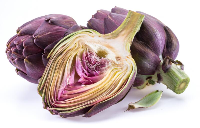 Artichoke flower, purple edible bud isolated on white background stock images