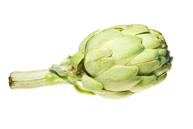 Download Artichoke Isolated On White Stock Image - Image: 24519125