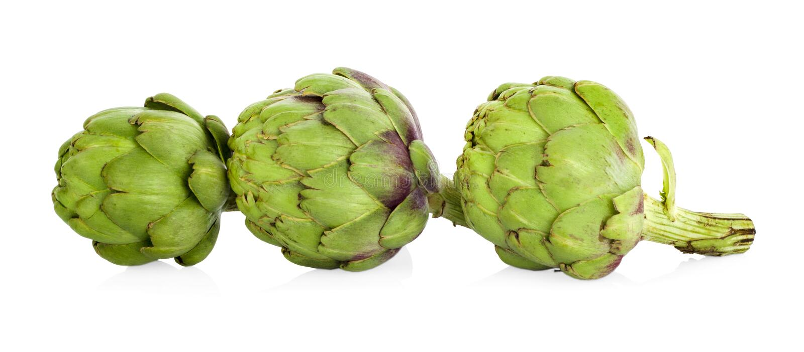 Artichoke isolated on white. Background royalty free stock photo