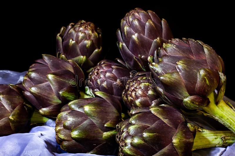 The artichoke is a plant of the Asteraceae family cultivated in Italy and other countries for food and, secondarily, medicinal royalty free stock images