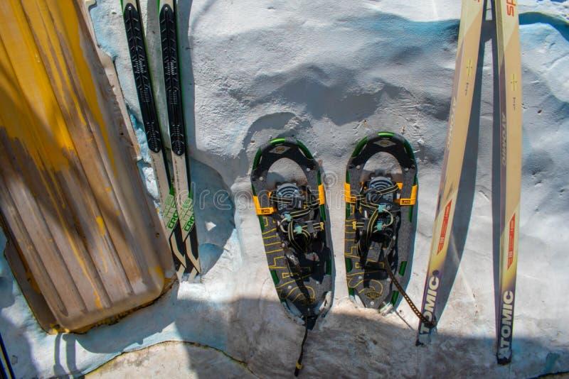 Articles de ski dans la région de l'Antarctique chez Seaworld photographie stock libre de droits