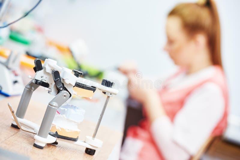 Articulateur avec le modèle dentaire de prothèse photo stock