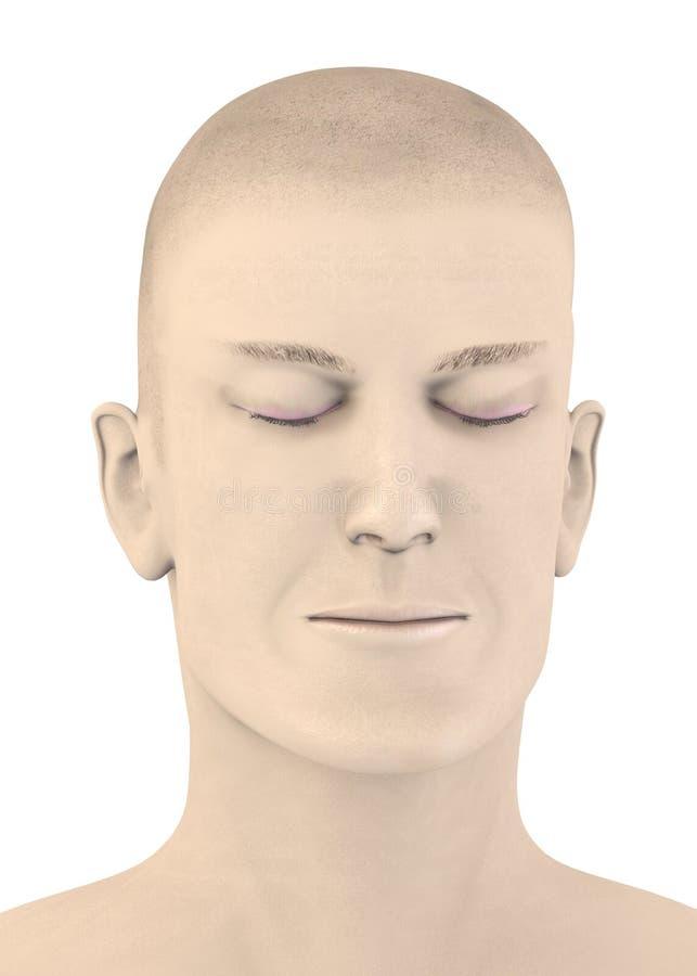 Download Artifical Male Face - Blink Stock Illustration - Image: 24911300