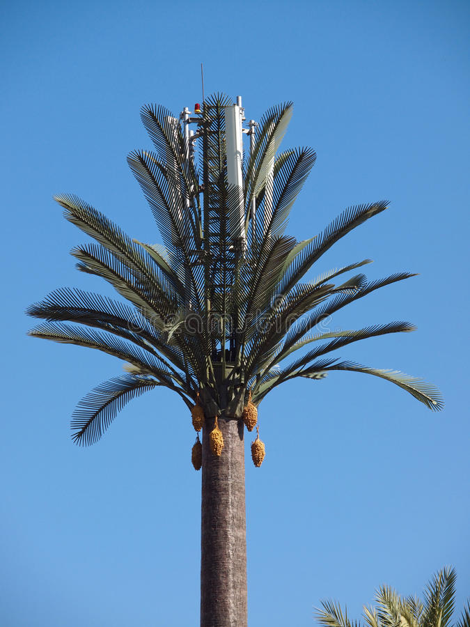Artifical palm tree royalty free stock photos