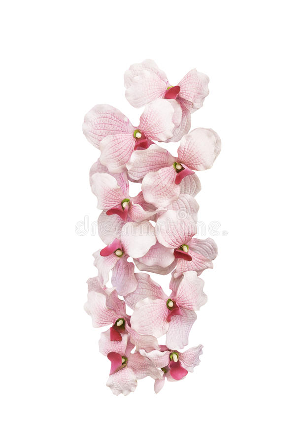 Artifical pink orchid flowers isolated. On white background stock photo