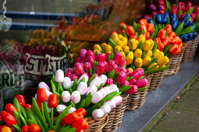 Artificial bouquets of tulips in baskets, a symbol of the Netherlands. royalty free stock images
