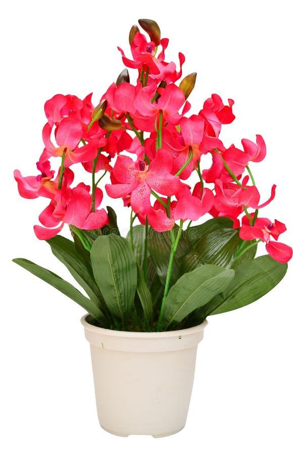 Artificial da orquídea da flor floresce o ramalhete isolado em b branco imagens de stock royalty free