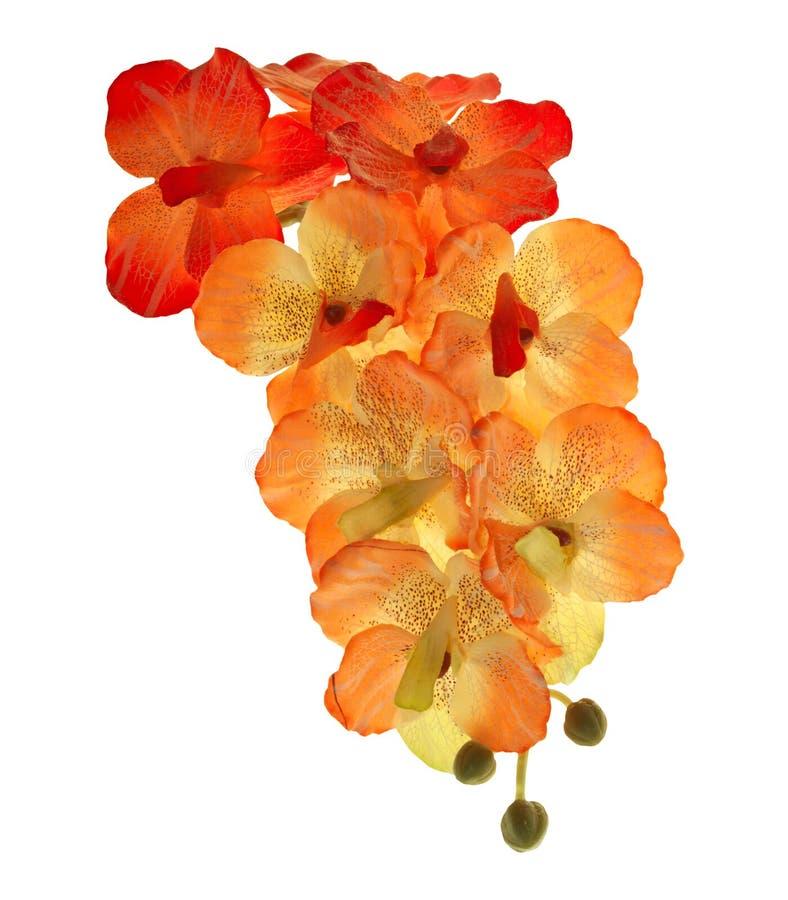 Artificial de orquídea del flor florece el ramo aislado en el balckground blanco imagen de archivo