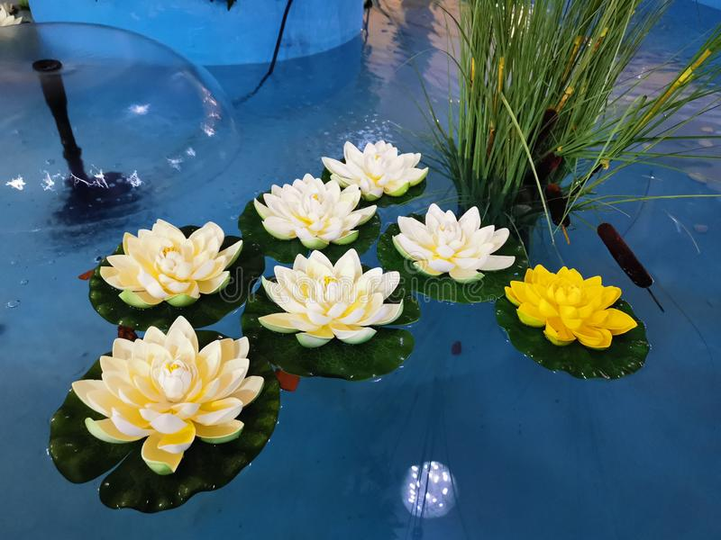Artificial decorative water lilies indoor stock photos