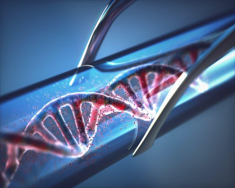 Artificial DNA Test Tube. 3D illustration. Creation of artificial DNA inside a test tube vector illustration