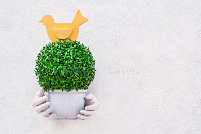 Artificial flora in flowerpot. Decorated on white wall royalty free stock photos