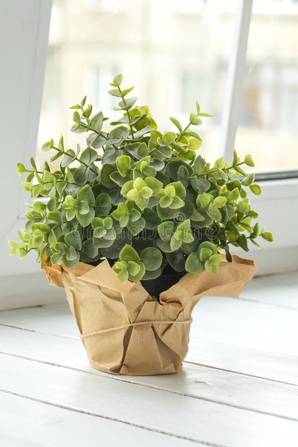 An artificial flower in a pot decorated with brown paper on a light window sill. Flower for office concept. stock photography