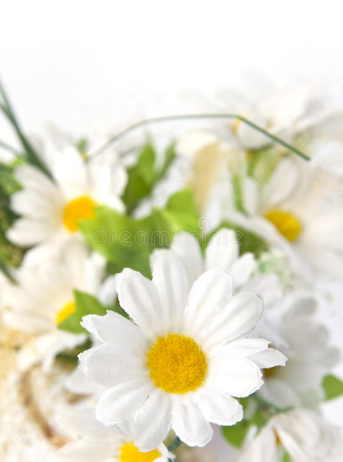 Free Artificial Flowers Stock Photo - 12689730