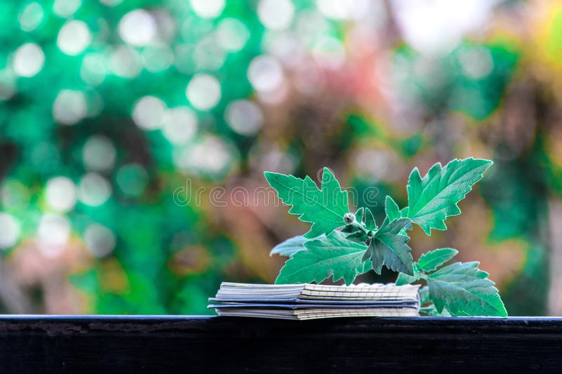 Artificial flowers on a bokeh background stock photography