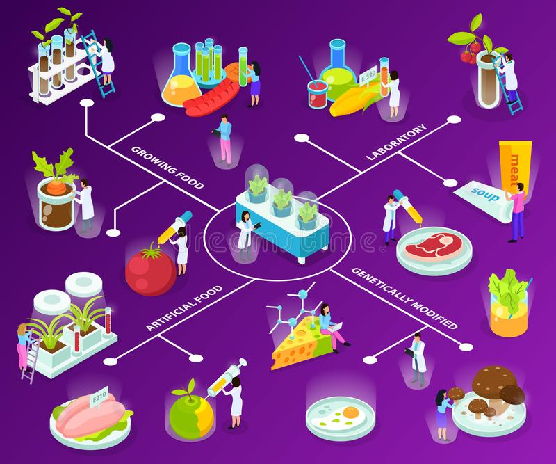 Artificial Food Isometric Flowchart. With scientists during experiments with eating ingredients on purple background vector illustration royalty free illustration