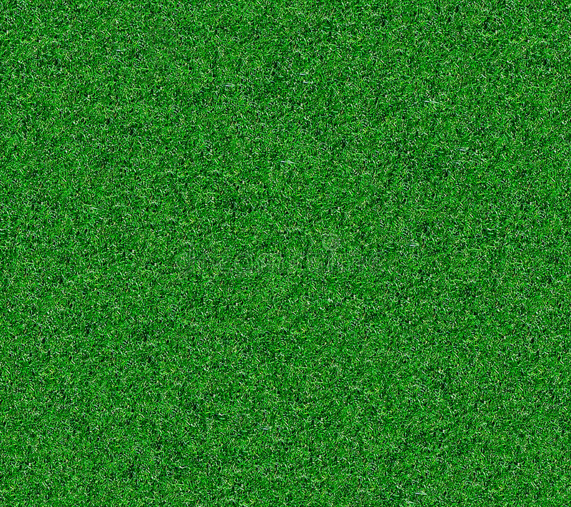 Download Artificial Grass Royalty Free Stock Images - Image: 7323099