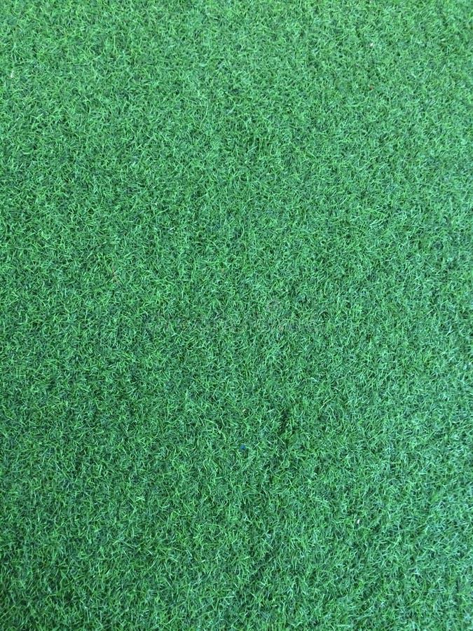 Artificial grass. royalty free stock photos
