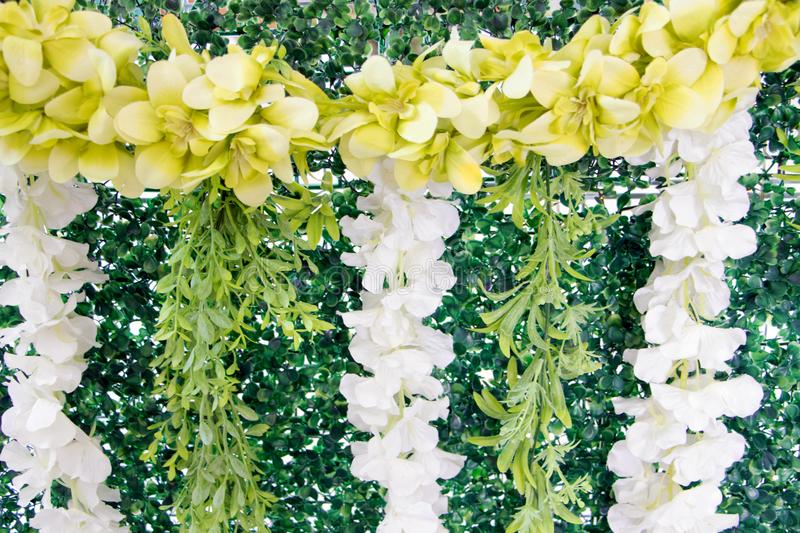 The artificial grass wall was adorned with flowers. The artificial grass wall was adorned with flowers in Thailand stock images