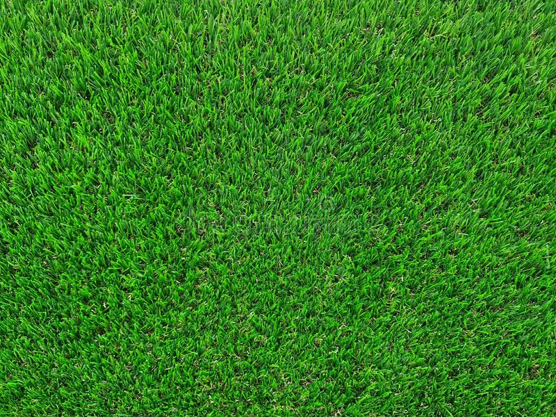 Artificial green grass background texture royalty free stock image