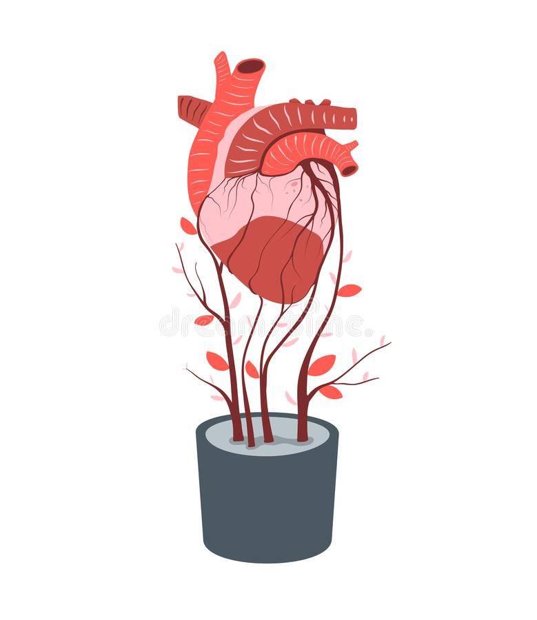 Artificial heart growing in flowerpot transplant or donor concept vector illustration vector illustration