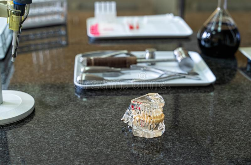 Artificial human jaw with tooth and surgical tools set on laboratory worktop. Lab equipment and glassware in background stock images