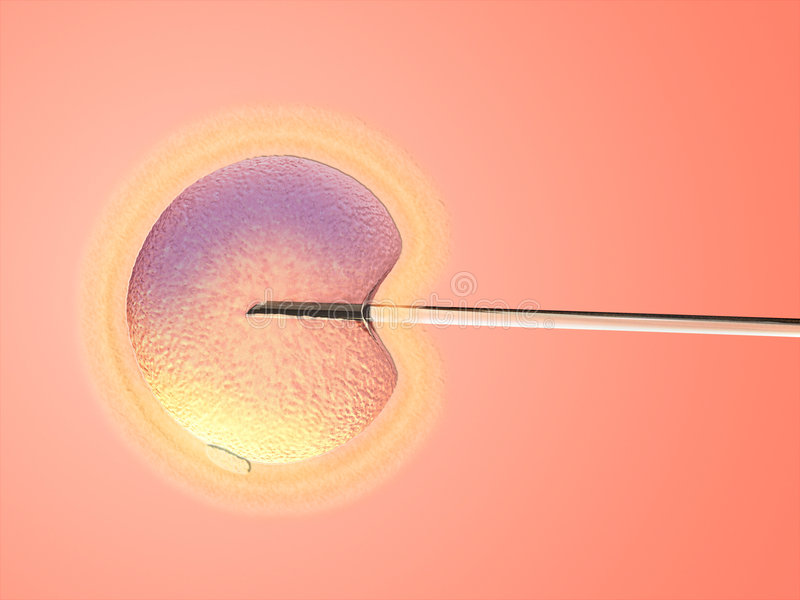Artificial insemination stock illustration