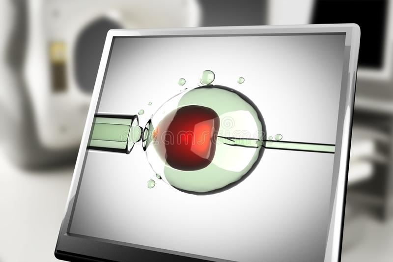 Artificial insemination on monitor in laboratory stock illustration