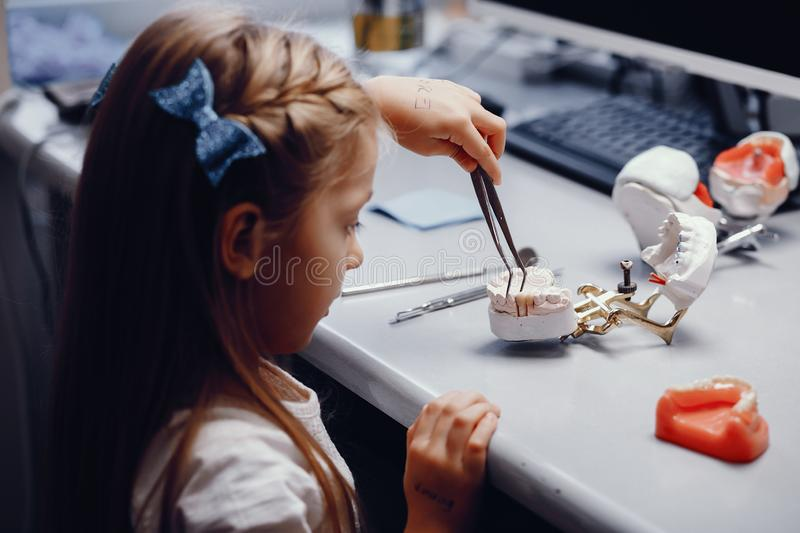 Artificial jaw in the dentist`s office. Plastic jaw in the dentist`s office. Little girl holds in the hands of dental implants royalty free stock photo