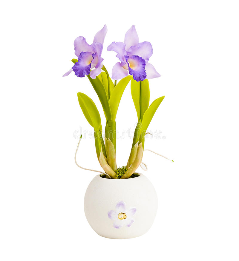 Download Artificial orchid flower stock photo. Image of clay, fresh - 20193192