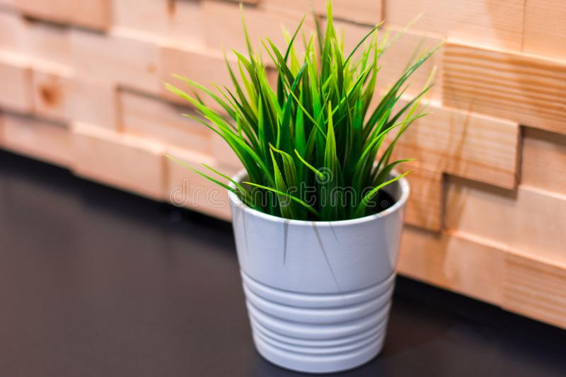 Artificial plastic plant in white pot on black wall mounted table and wooden wall. For background stock photo