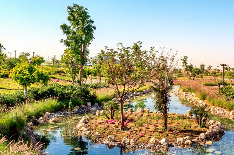 Artificial pool with stones, flowers and trees in Dubai safari park. Zoo, where animals live in natural conditions royalty free stock photo