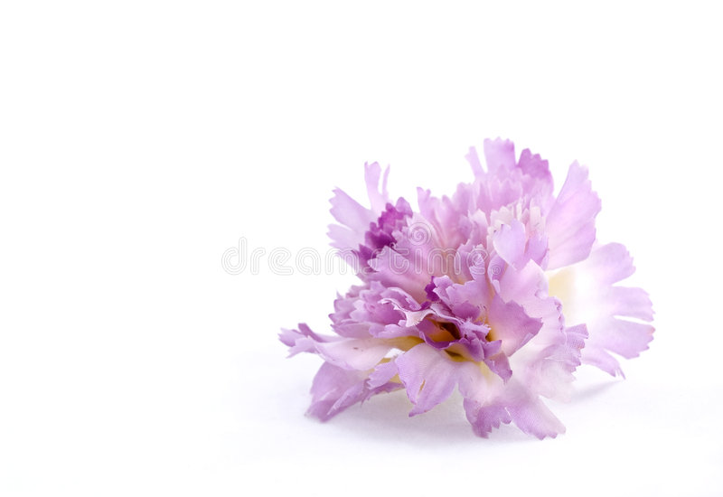 Artificial purple flower royalty free stock images